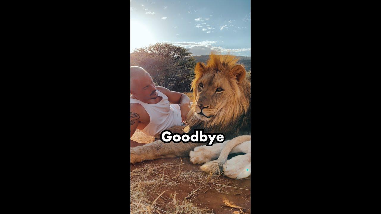 Goodbye 😭❤️#shorts