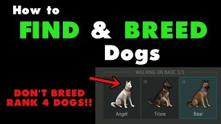 How to Find and Breed Dogs in Last Day on Earth Survival. LDOE…