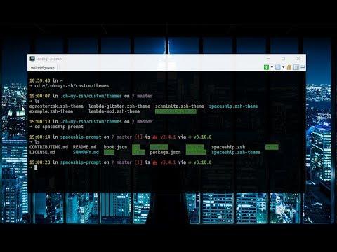cmder + ubuntu bash(WSL) + oh my zsh