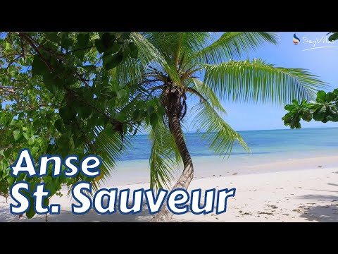 Anse St. Sauveur, Praslin - Beaches of the Seychelles