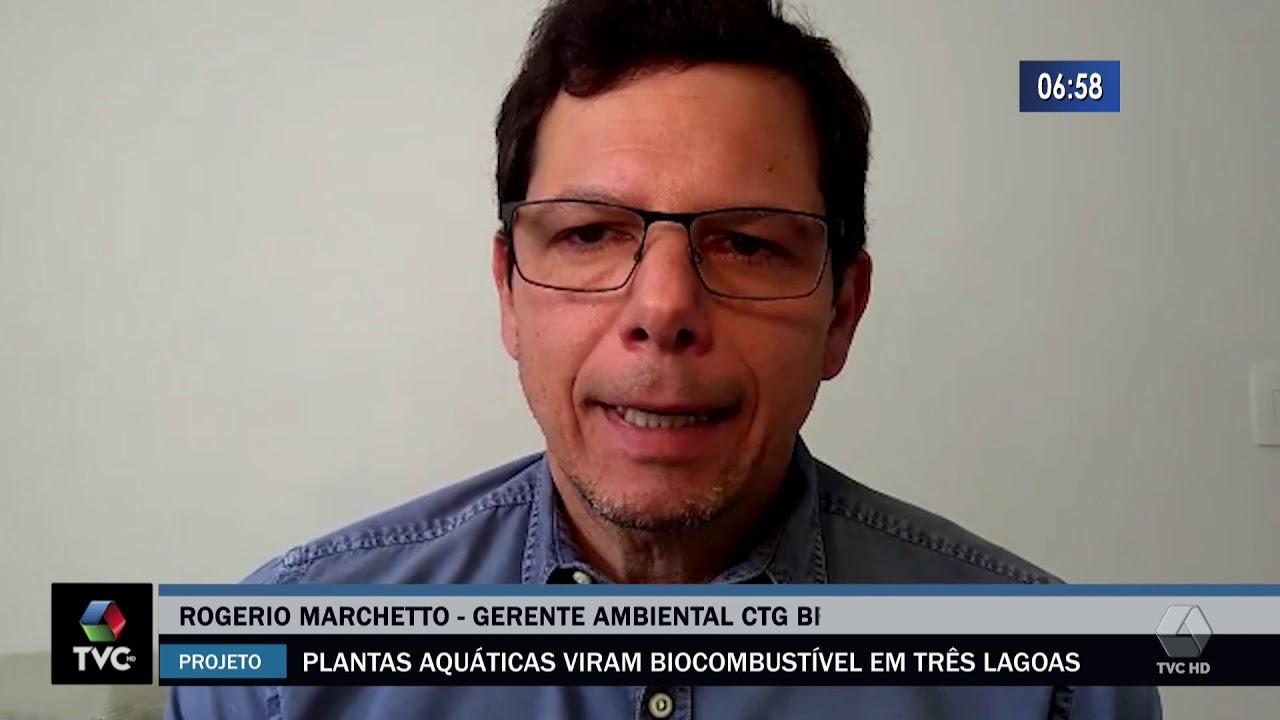 Plantas aquáticas viram biocombustível em Três Lagoas