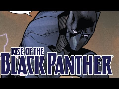 Rise of the Black Panther Interview with Evan Narcisse! - Electric Playground