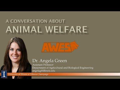 A Conversation About Animal Welfare