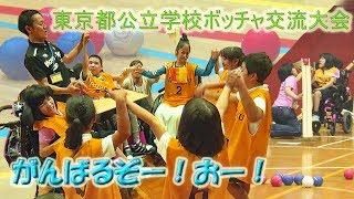 東京都公立学校ボッチャ交流大会 ~交流チーム編~