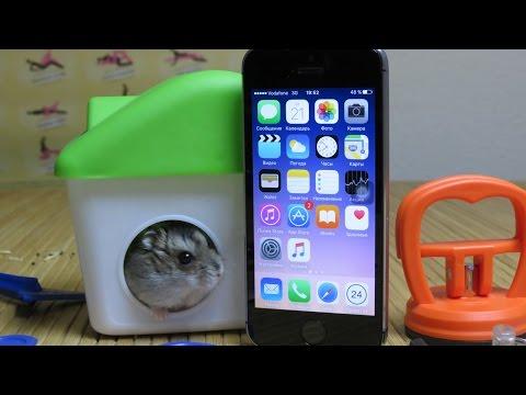 Замена шлейфа кнопок Power, Mute и Громкость iPhone 5S