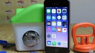Ремонт восстановленного iPhone 5S