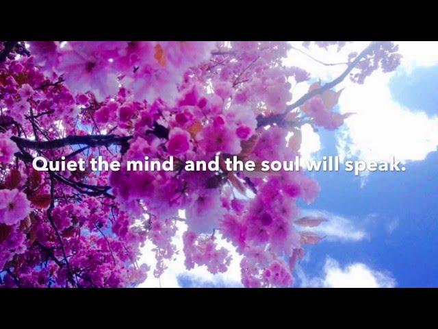 Guidet meditasjon- Måneskinn