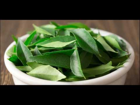 Homemade Curry Leaves And Coconut Oil Massage Mask Prevents Premature White And Grey Hair