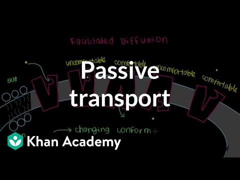 Passive Transport by Facilitated Diffusion | Cells | MCAT | Khan Academy