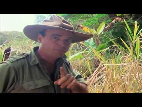 Bush Tucker Man - Cape York  part 1 of 3