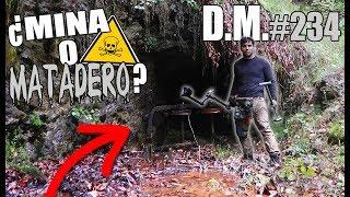 En busca del METAL MÁS TÓXICO DEL MUNDO, con mi DETECTOR DE METALES - Detección Metálica 234