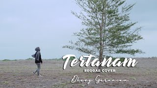 Download Mp3 Tertanam - Tony Q Rastafara Cover  Dhevy Geranium