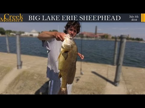 Big Lake Erie Sheephead, Bird Island Pier, Buffalo NY