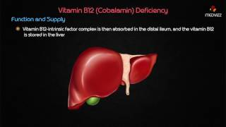 Vitamin B12 Deficiency - USMLE Biochemistry  Case based discussion