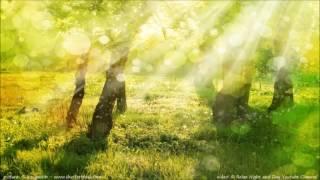 早晨感恩 每天早上黙唸兩分鐘改變一生的感恩練習冥想 [粵語/廣東話]