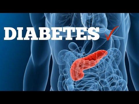 Diabetes; Onze Bloedsuiker Uitgelegd