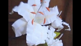 Paper Flower - Lily White