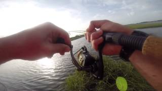 Peeling Drag Big Redfish in the Kayak #gopro