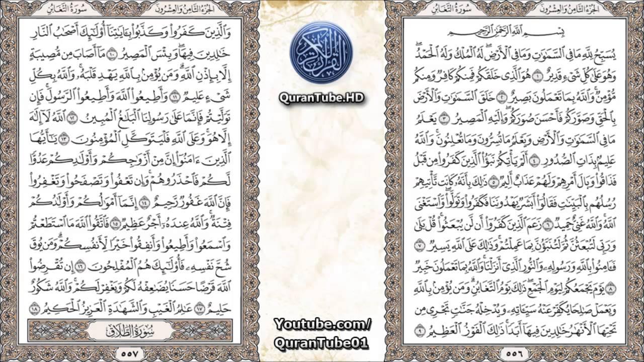 سورة التغابن فارس عباد