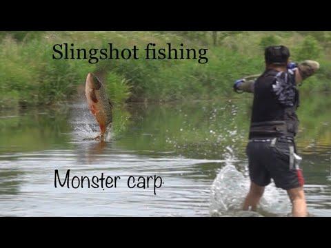 РЫБАЛКА НА САЗАНА .РЫБАЛКА С РОГАТКОЙ ОНЛАЙН.MONSTER.SLINGSHOT FISHING ONLINE