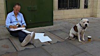 Собака помогла бездомному обрести дом и работу (новости)