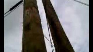 painting a utility pole