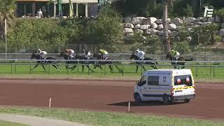Vidéo de la course PMU PRIX GRIS DE GRIS