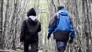ARGENTINA: Ushuaia, Parque Nacional Tierra del Fuego & Glacial Martial. Ruta Panamericana roadtrip