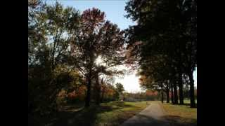 Autumn in Midwest in the U.S. / アメリカ中西部の秋