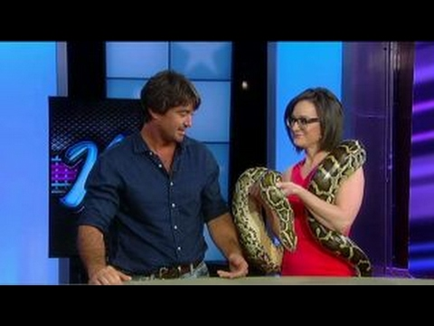 Kennedy gets a close encounter with a Burmese python Hqdefault