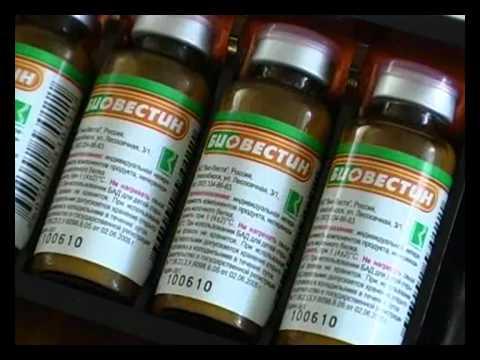 дисбактериоз влагалища симптомы