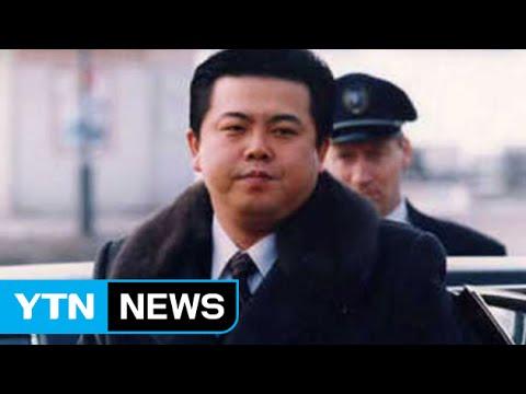 '김정일 이복동생' 김평일, 평양서 김정은 만나 / YTN