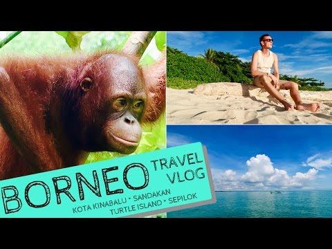 Borneo 2017 | TRAVELLING VLOG - KOTA KINABALU, SEPILOK ORANGUTANS, TURTLE ISLAND, SANDAKAN