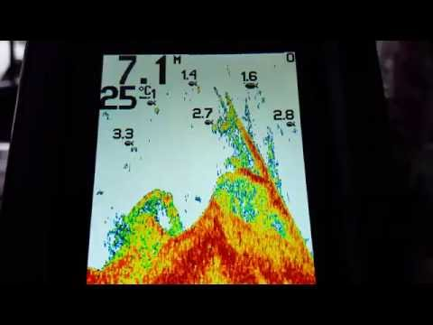 Humminbird PiranhaMAX 4, From LAGO-BG (indoors Video)
