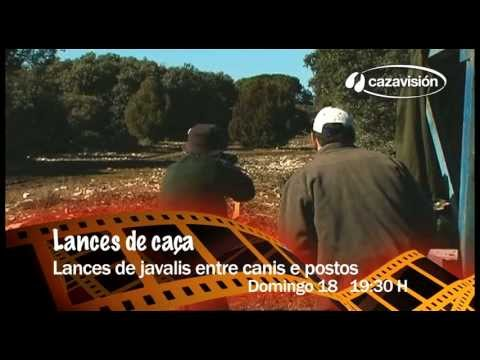 Lances ao jabalí, entre matilheiros e postos TRAVEL_VIDEO