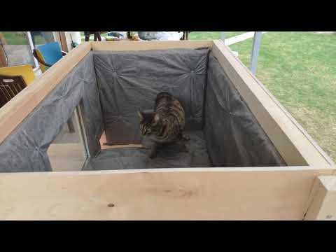 Домик для кошки на улице своими руками