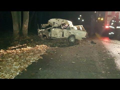 ДТП в Михайловке унесло жизни четырех человек