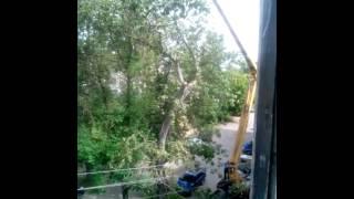 6 июля 2016 г.пилят деревья)(, 2016-07-06T06:57:14.000Z)