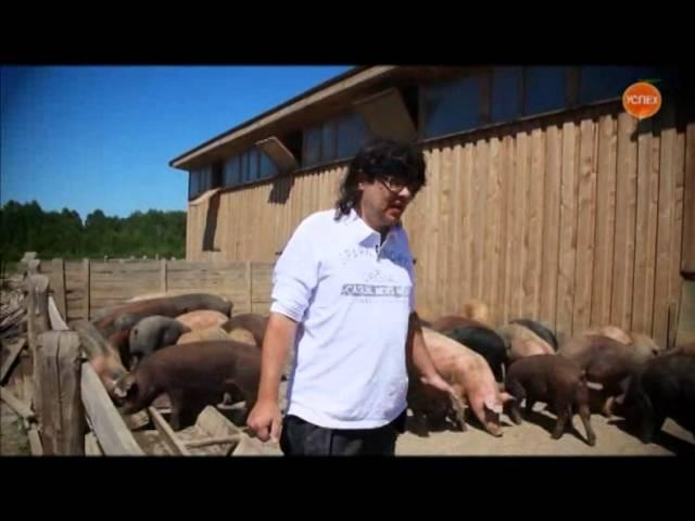 Айтишник на ферме -- серия 2