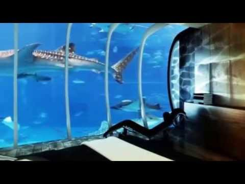 Hotel debajo del agua hoteles raros en dubai debajo del for El hotel que esta debajo del agua