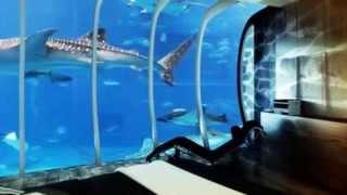 Hotel debajo del agua - Hoteles raros en Dubai debajo del mar