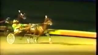1987 Roosevelt Raceway ARMBRO EMERSON Breeders Crown Aged H&G Pace Walter Whelan