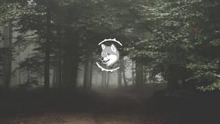 Broken Back - Halcyon Birds (LarryKoek Remix)