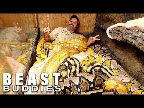 'Snake God' Wrestles 20ft Pythons | BEAST BUDDIES
