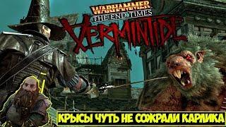Warhammer: End Times - Vermintide ● Крысы чуть  не сожрали карлика... или наоборот...хм