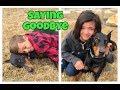 saying goodbye to our dog