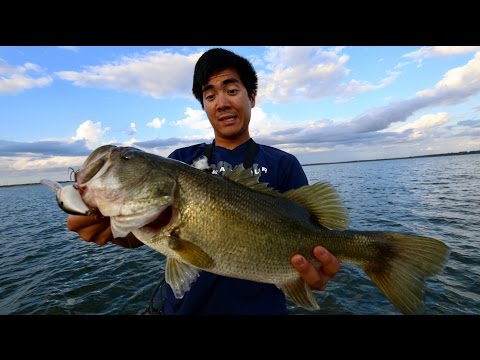 Bass Fishing in 95 DEGREE Water?!?! ABSURD Power Plant Lake in Texas