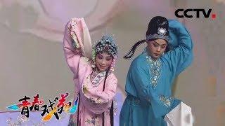 《青春戏苑》 20190507 戏韵芬芳| CCTV戏曲
