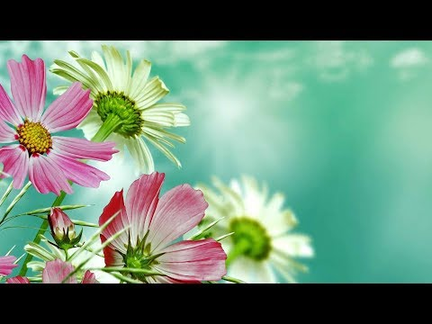 "Peaceful Music, Relaxing Music, Instrumental Music ""Beautiful Romania"" by Tim Janis"