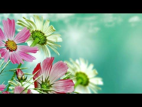 Peaceful Music, Relaxing Music, Instrumental Music  Beautiful Romania  by Tim Janis